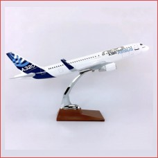 A320 In house livery, 40cm, stand