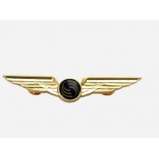 Airbus Wing, 8cm width, pilot gift, colour: golden