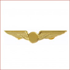 Pillot Wing, 8cm wide, Golden colour, blank